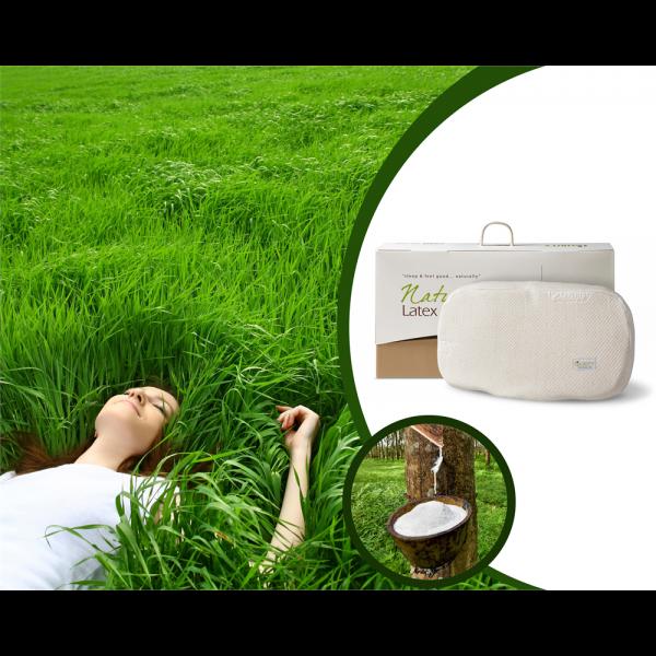 Natural Latex Anatomic Pillow Cream #2